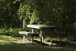 Briarwood Park Picnic Table